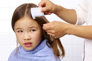 a parent combing for head lice