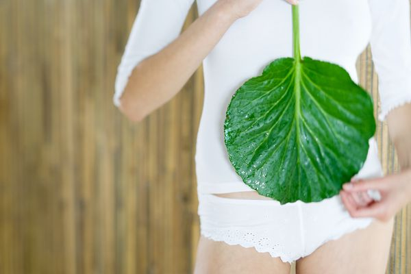 Young woman holding leaf in front of stomach, cropped view