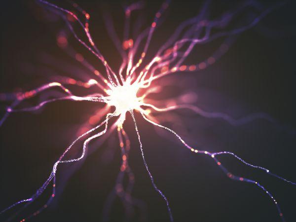 Illustration of a nerve cell.