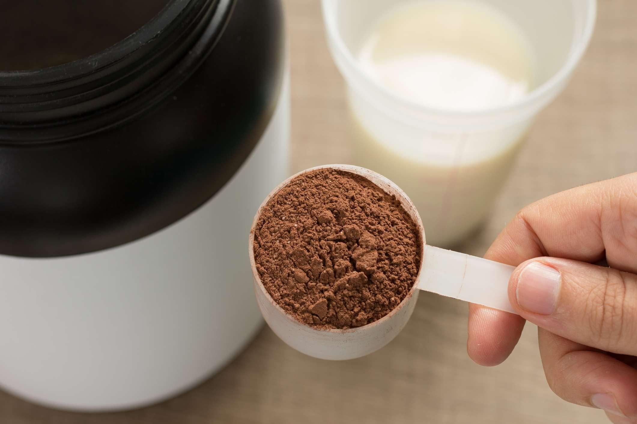Chocolate-flavored protein powder with casein