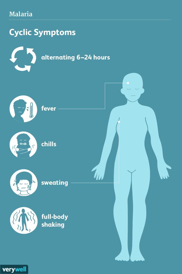 malaria symptoms