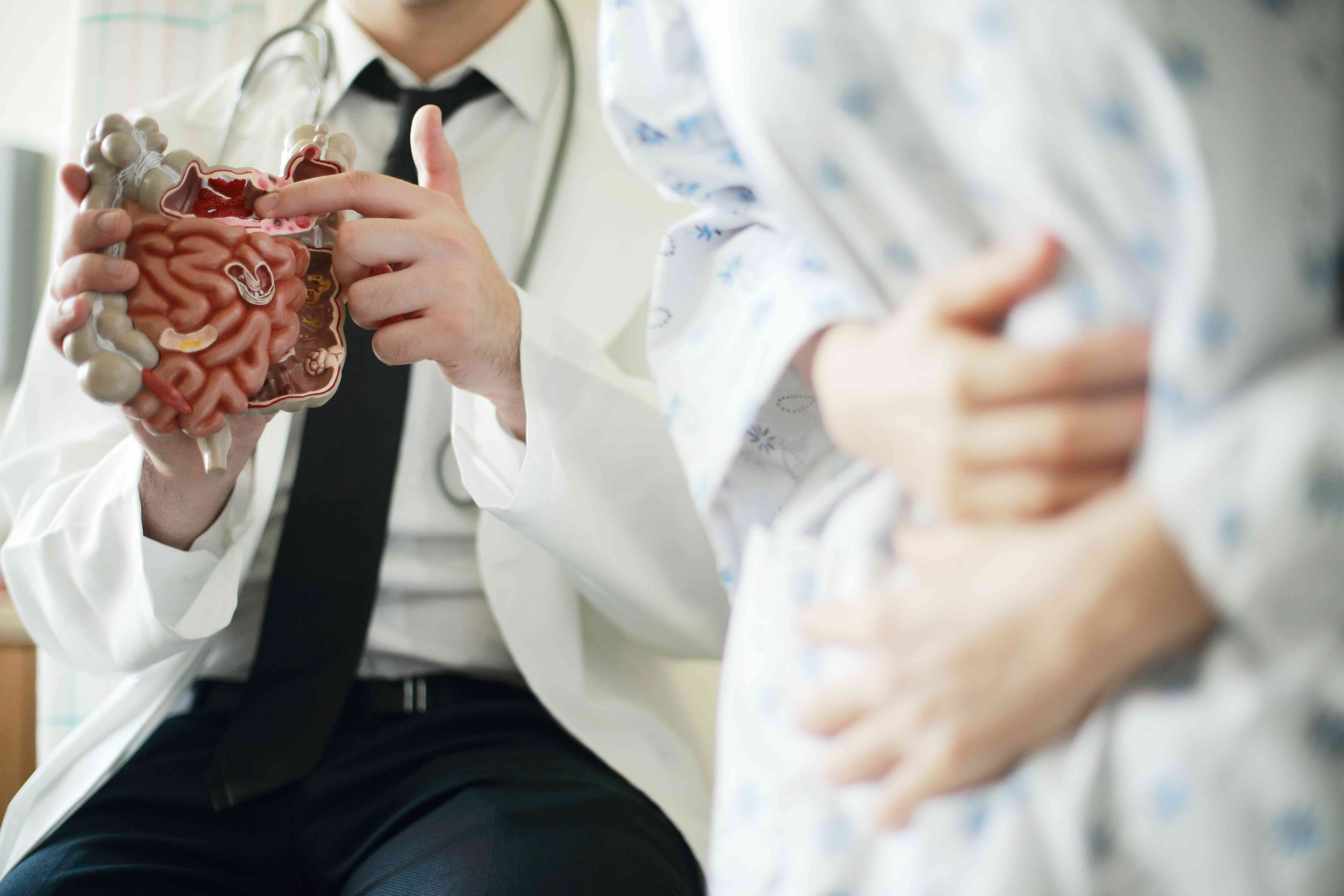 Doctor showing intestine model to patient in office