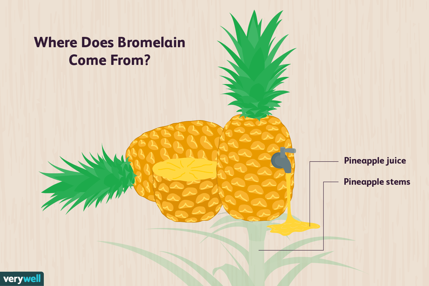 Bromelain: Benefits, Side Effects, and Preparations