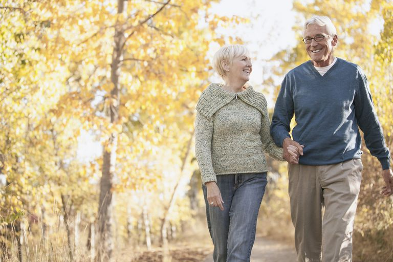 Senior couple walking in the woods hand in hand