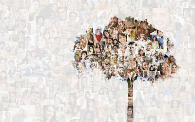 Tree over collage of faces