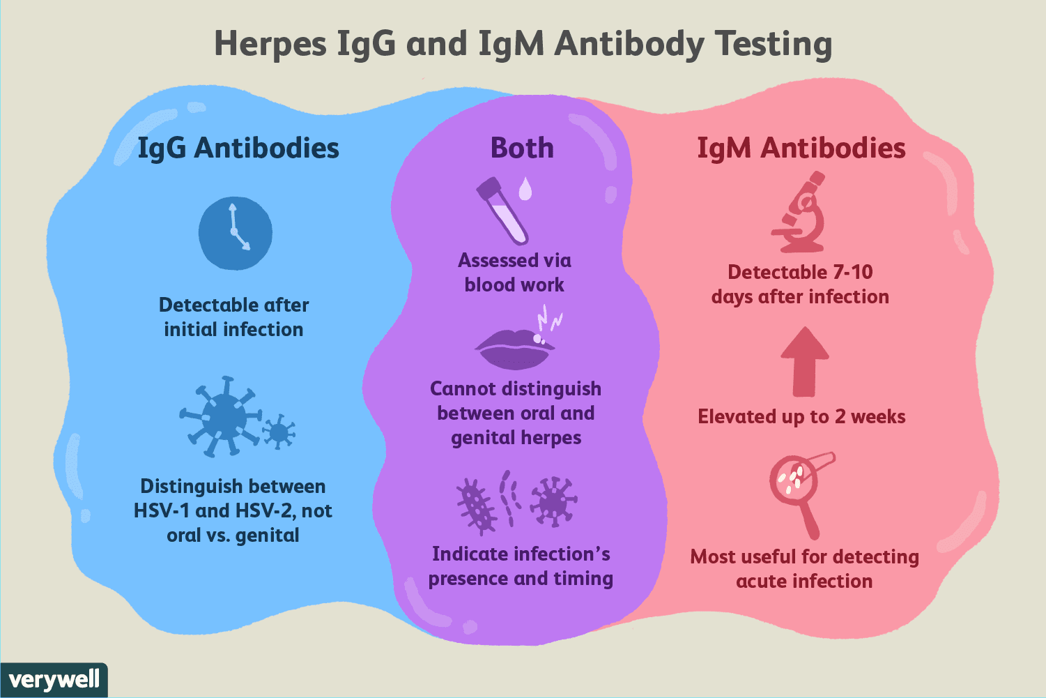 What Does A Positive Herpes Igg Blood Test Mean