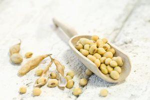 Soybeans in wooden scoop