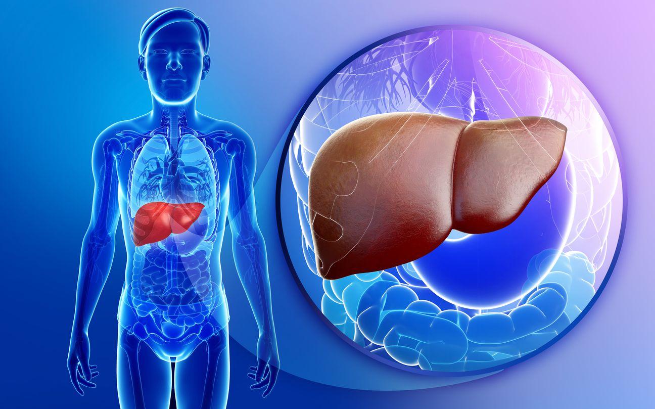 Hepatic Hemangioma Signs Symptoms Treatments