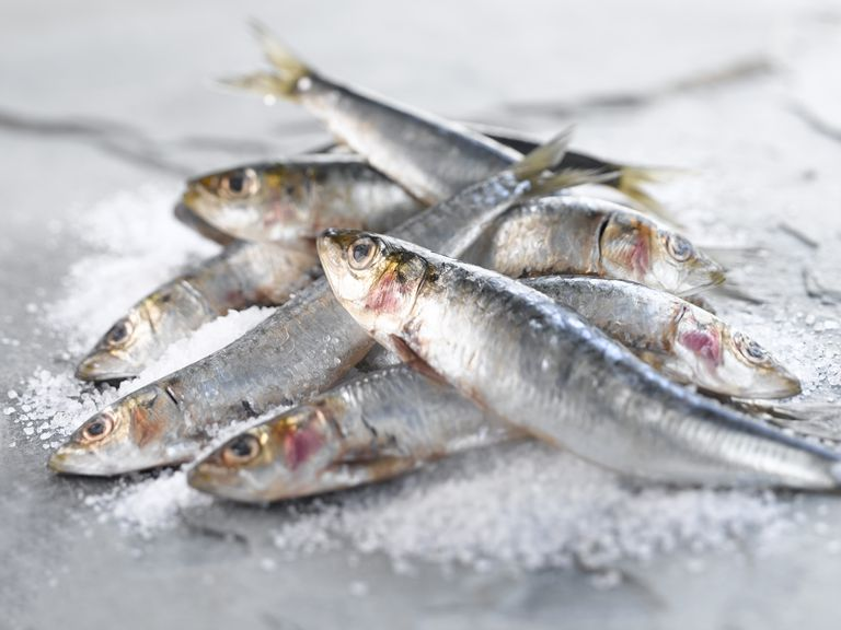 Fish Allergy Symptoms, Diagnosis, Treatment, and Coping
