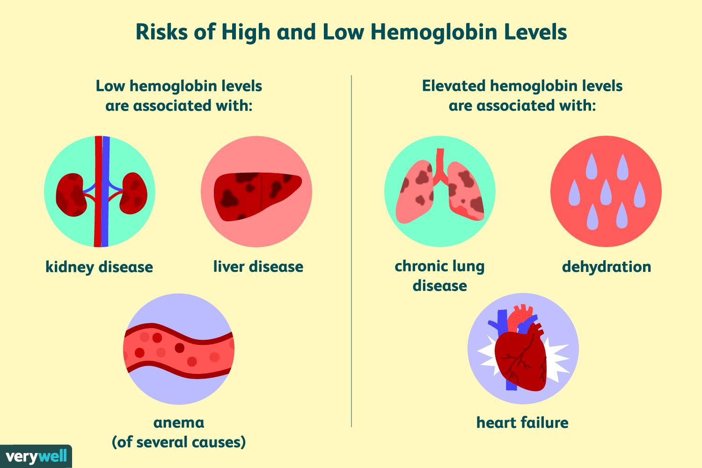 Hemoglobin Test: Uses, Side Effects, Procedure, Results