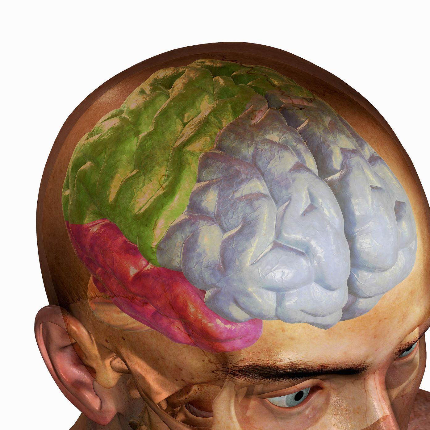Frontal Lobe Head Trauma Effects and Treatment
