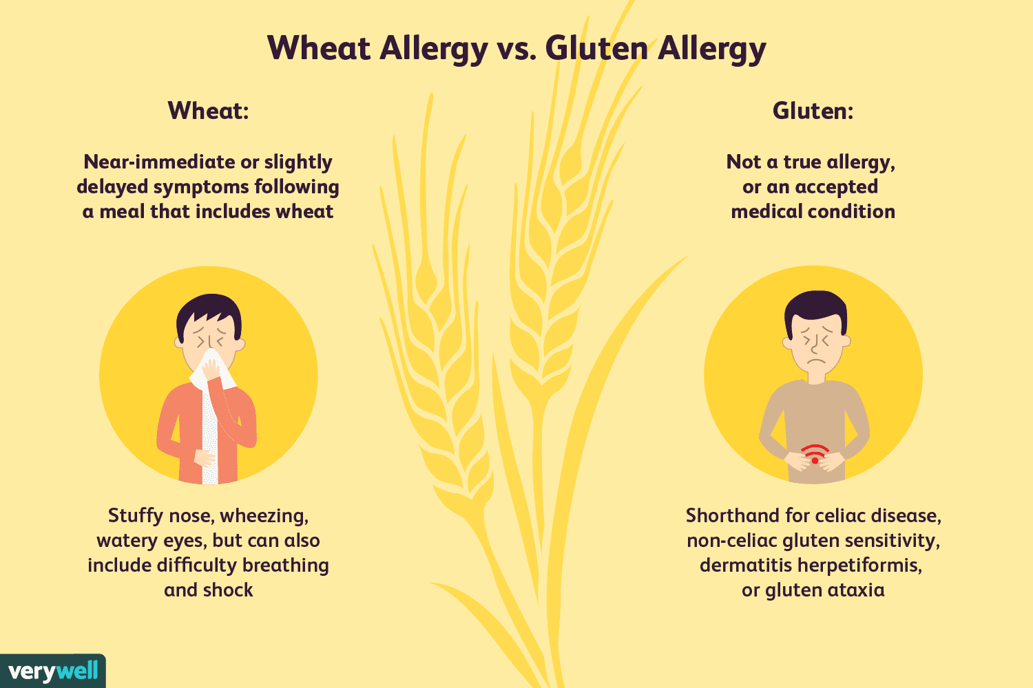 Wheat Allergy: Symptoms, Causes, Diagnosis, and Treatment