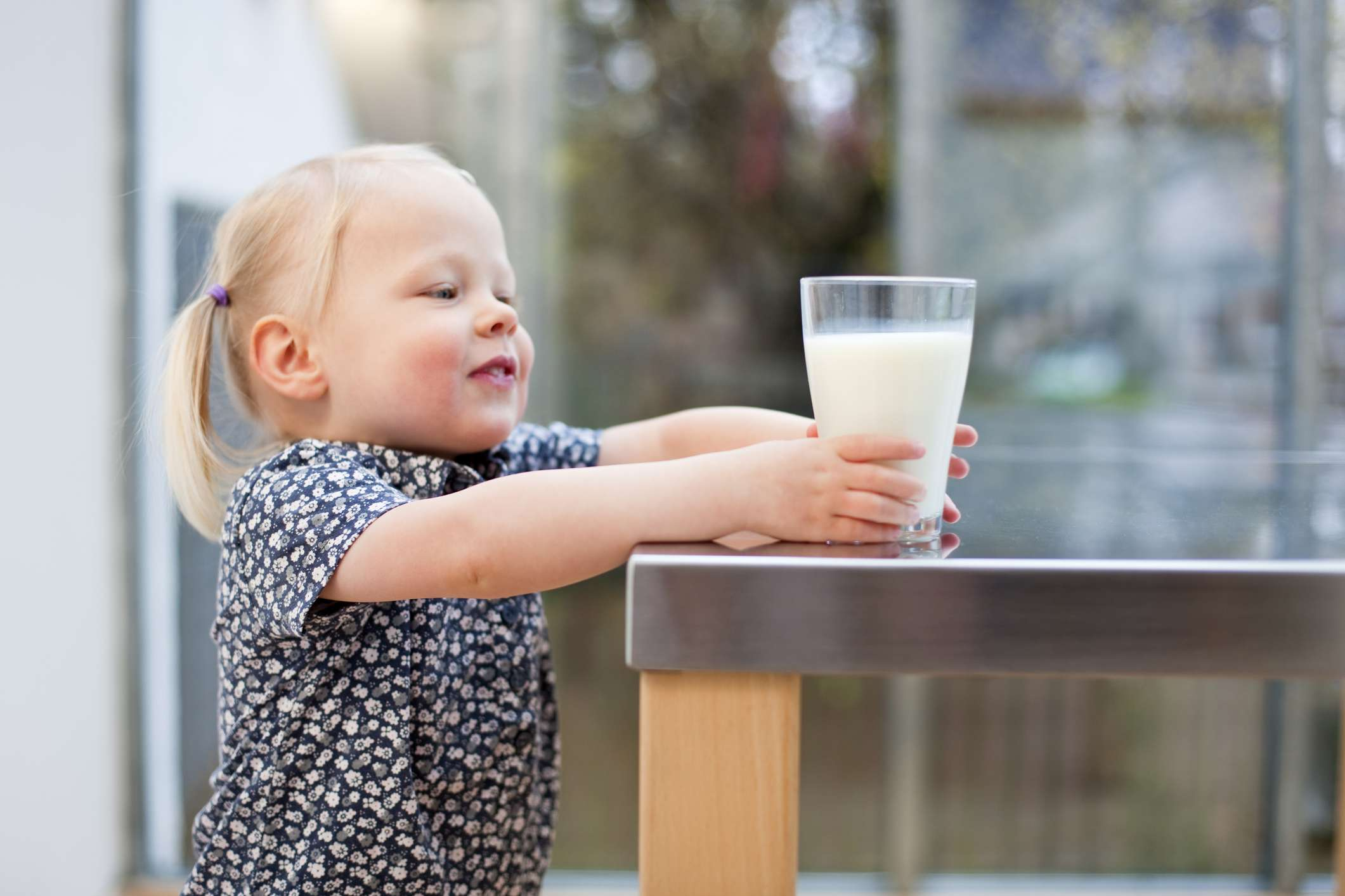 Toddler girl holding glass of milk