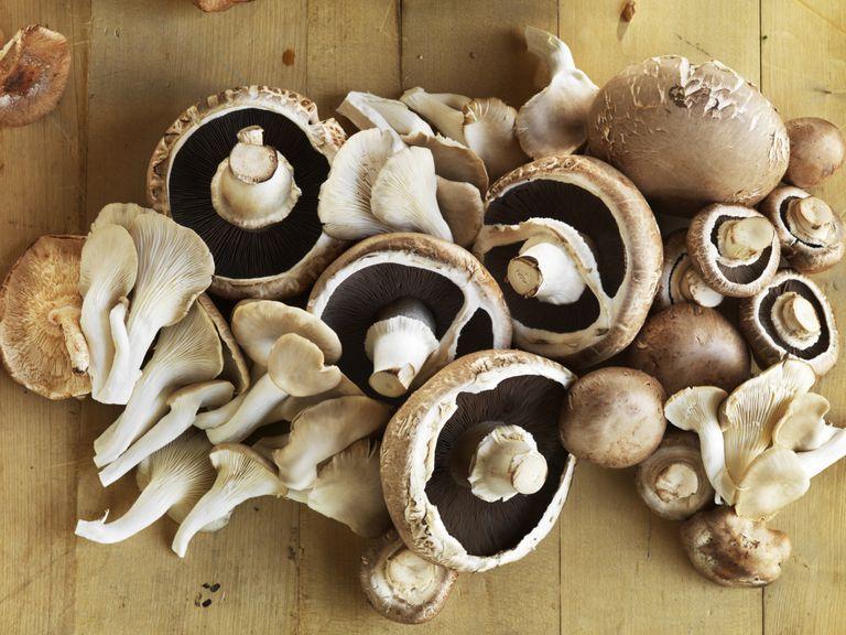 The Health Benefits of Mushrooms