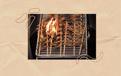 Cicadas on a barbecue.