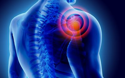 pain impulses are first processed in the