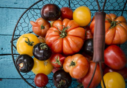 Ripe Tomatoes in a Basket