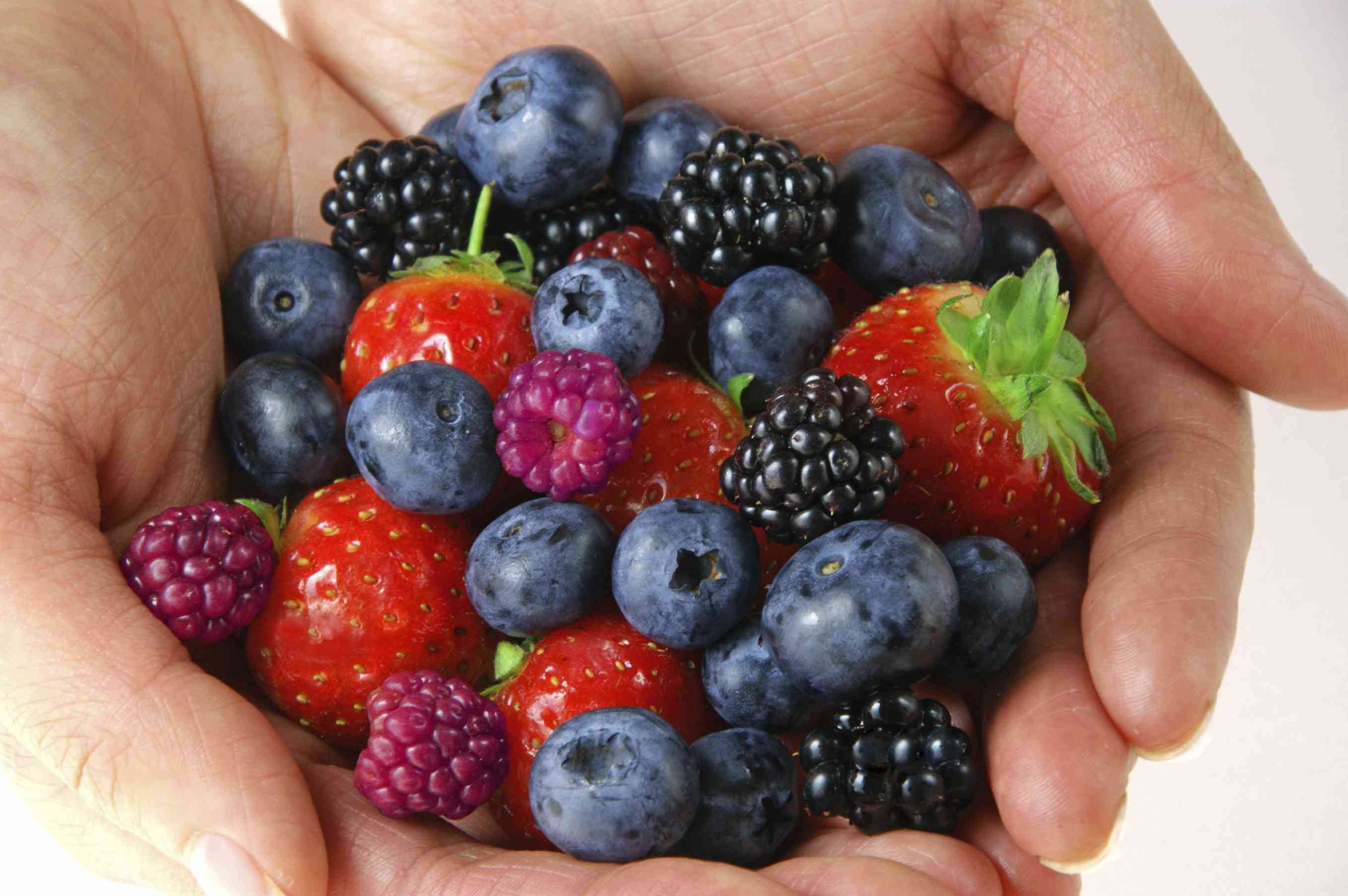 Many different berries held in hands