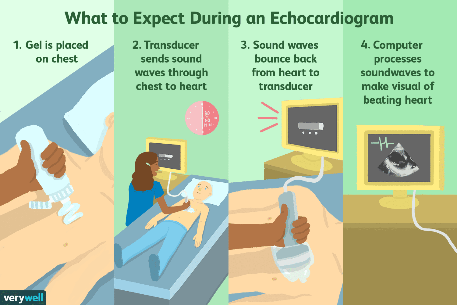 echocardiogram uses side effects procedure results