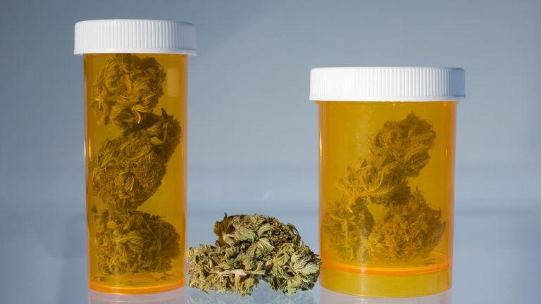 Cannabis Indica vs. Cannabis Sativa