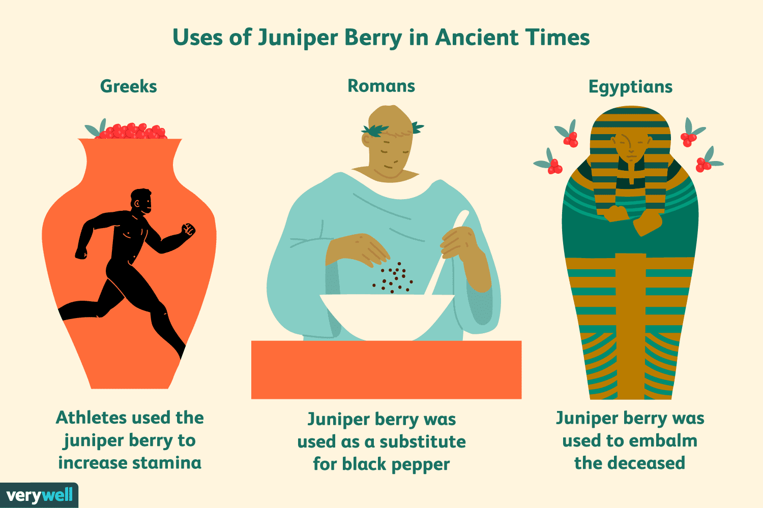 Juniper Berries Benefits Side Effects And Preparations