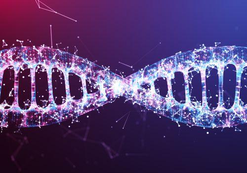 DNA wire