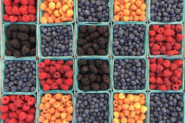 assorted berries in green containers