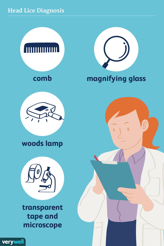 head lice diagnosis