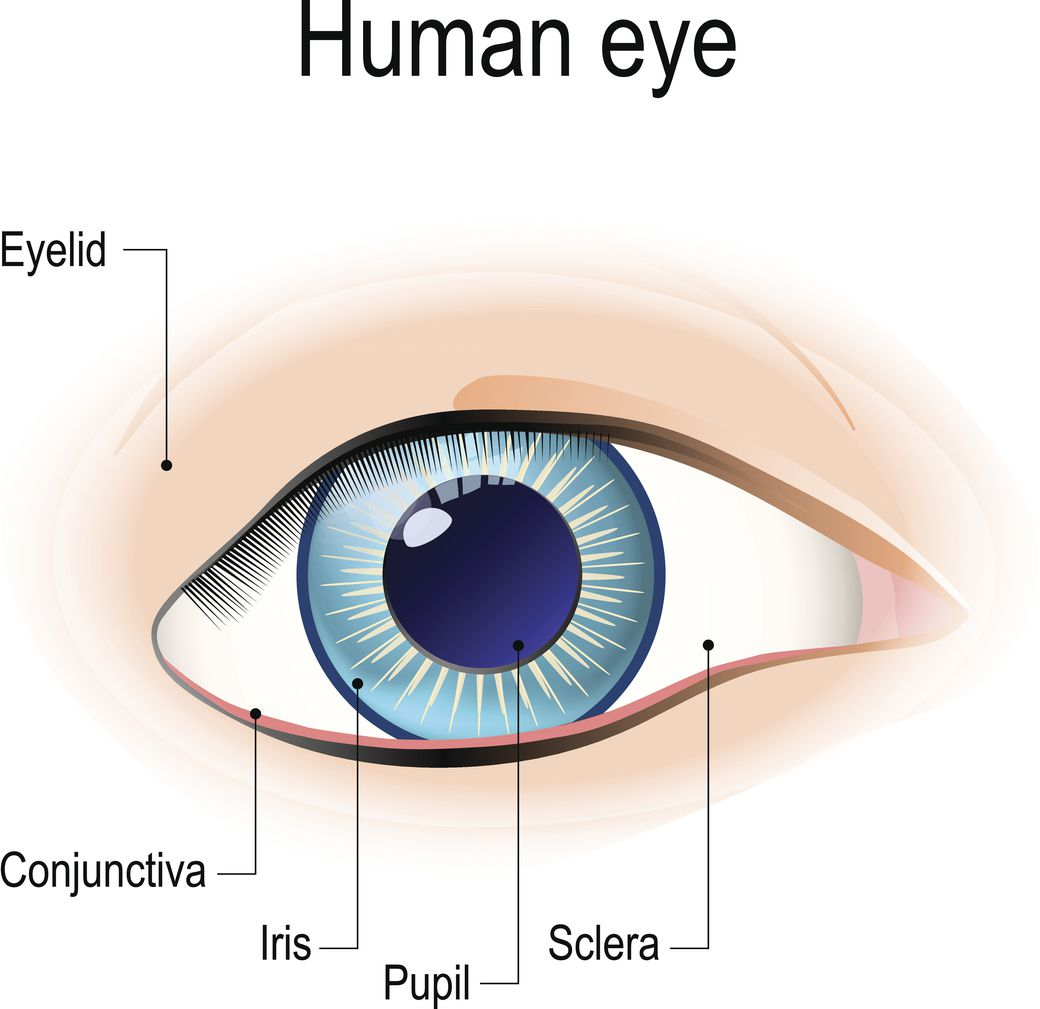 859f28bf57e 5 Ways Lupus Affects the Eyes