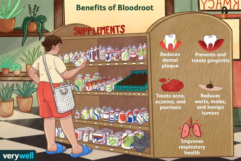 benefits of bloodroot
