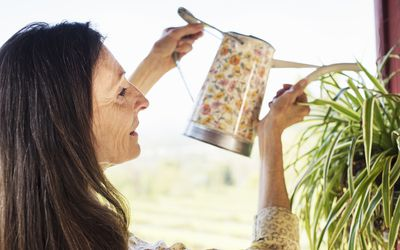A woman with long brown hair watering a plant.