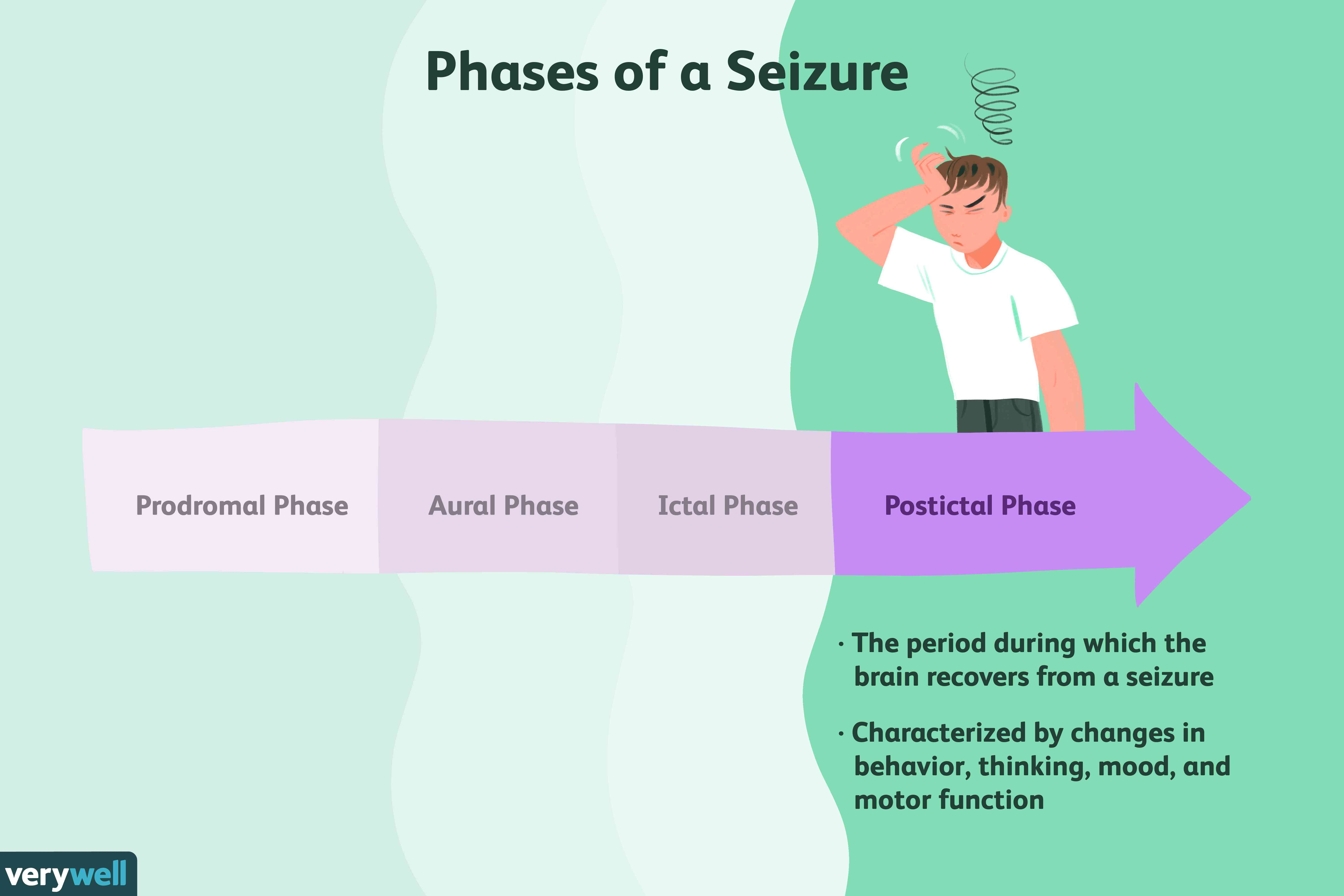 Delaying Vaccines May Increase Seizure >> The Postictal Phase Of A Seizure