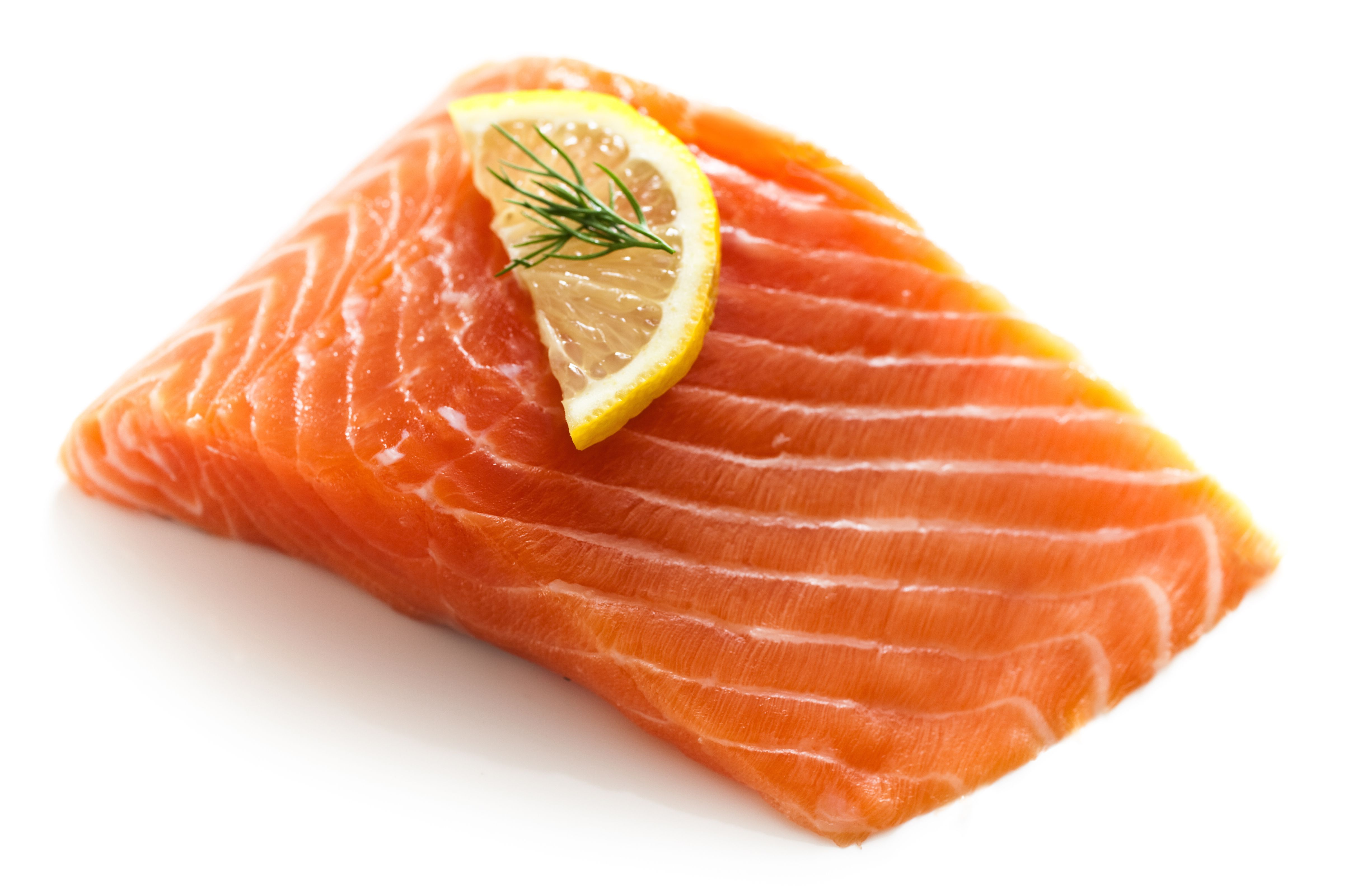 Filet of salmon topped with a lemon slice