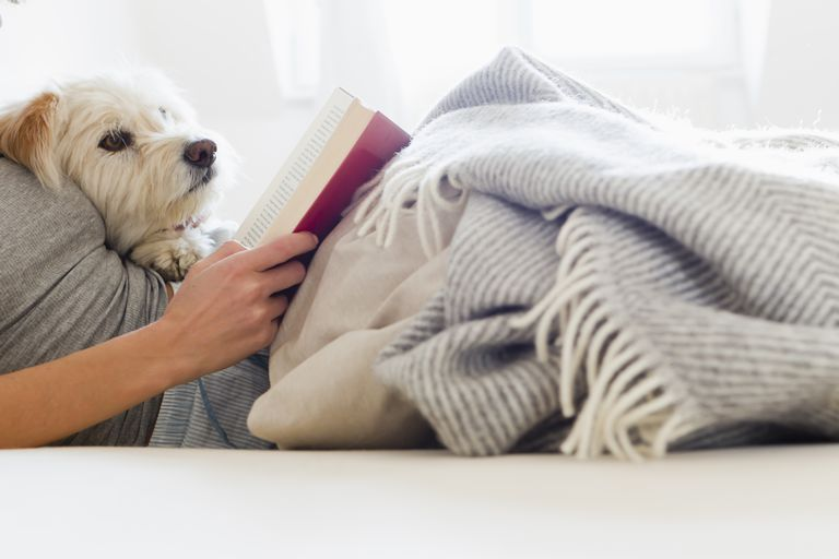 Image of a person reading with their dog.
