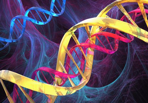 Three DNA double helixes are shown in bright colors.
