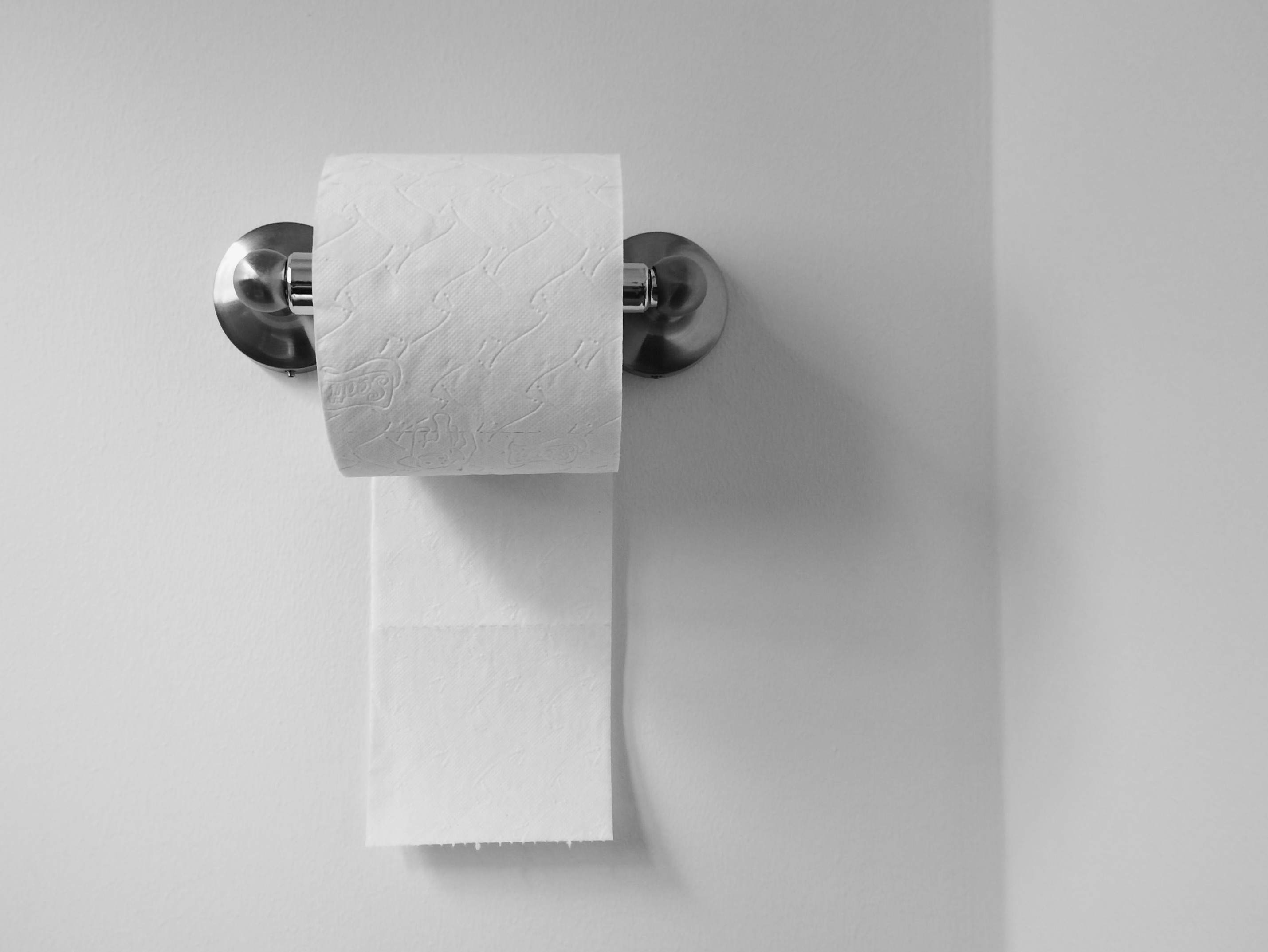 roll of toilet paper on wall
