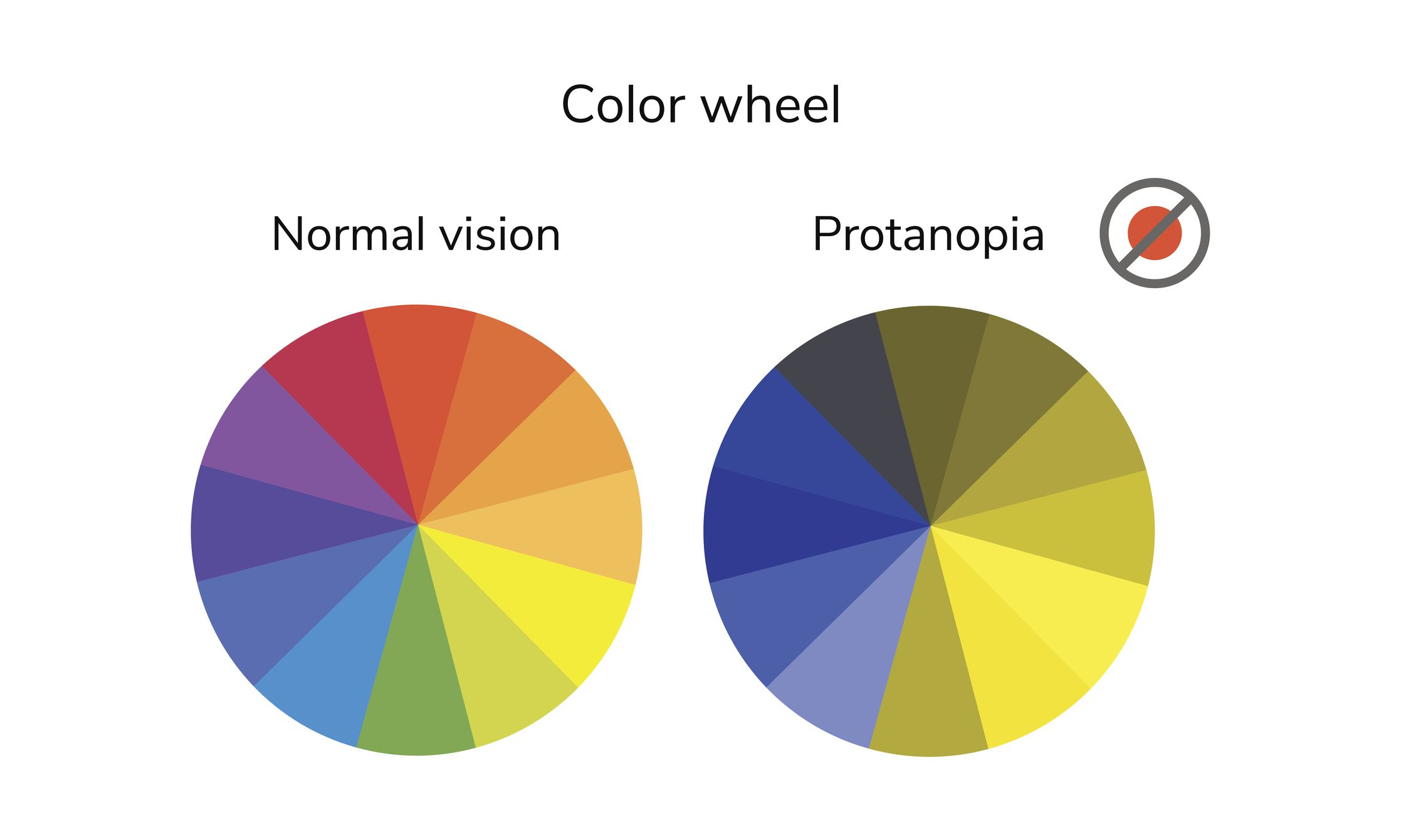 Color wheel showing normal vision and protanopia vision