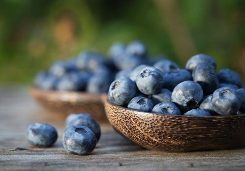 Bowls of blueberries in garden