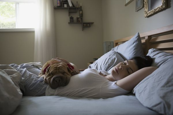 Woman sleeping in bed with dog