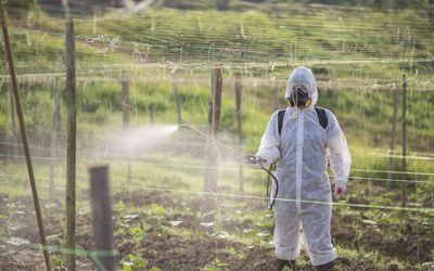 Farmer with protective suit manual pesticide sprayer on her plantation