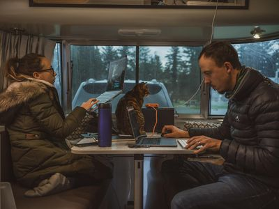 couple working on laptops while cat sits on table