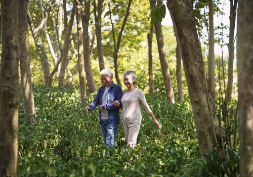 Older asian couple walking in nature.